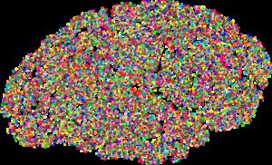 A stylized brain as a symbolic representation of interesting academia