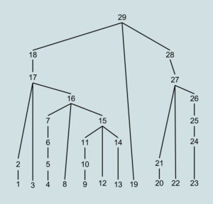 Bottom-up Parse Tree Order